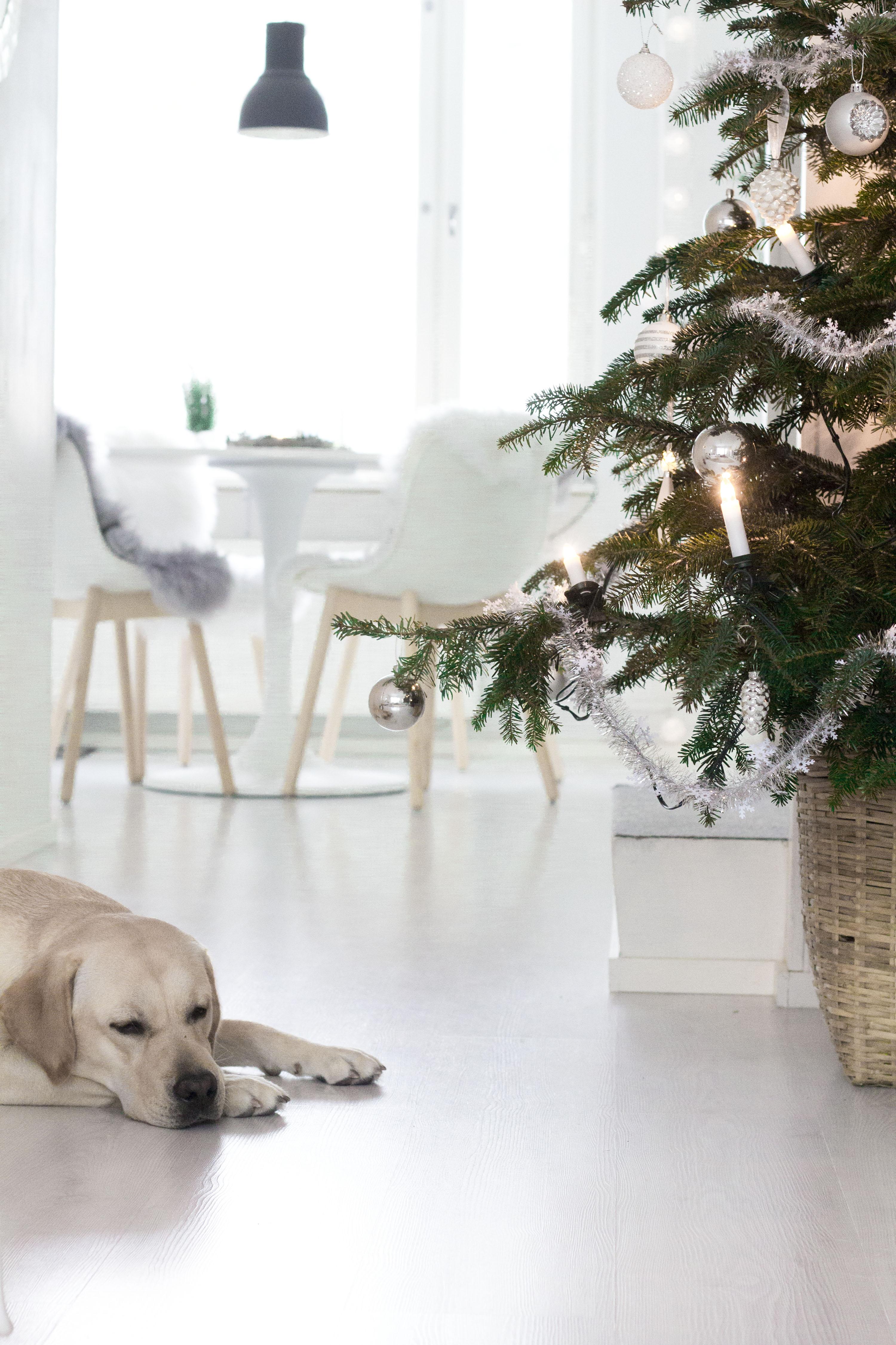 Joulukuusi Joulukalenteri Checklist-blogi
