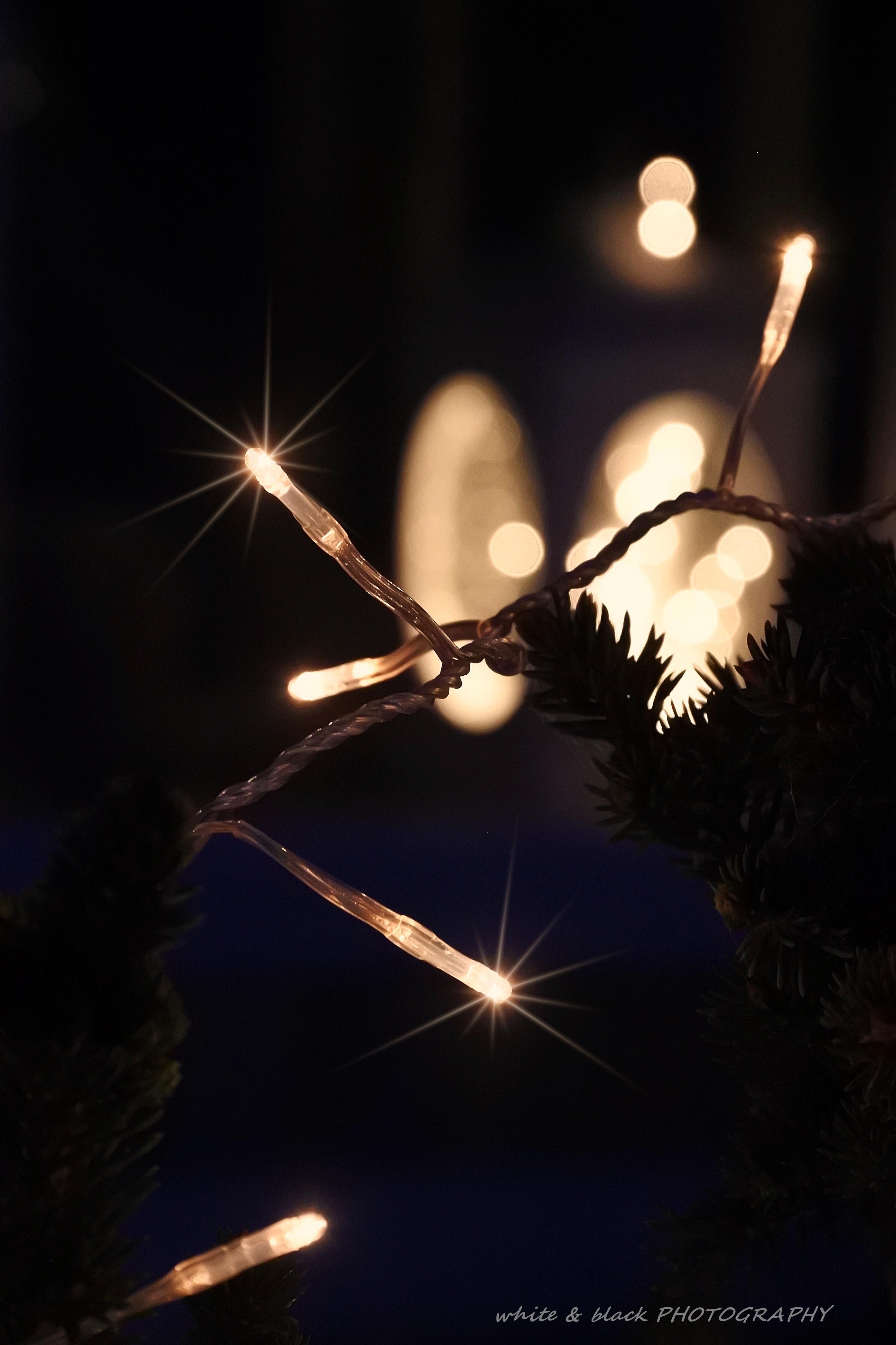 Joulukalenteri Joulumaa pihan koristelu White Black -blogi